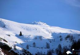 gedre-neige-hiver-coumely-pyrennes.jpg